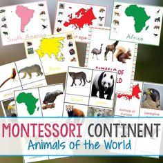200+ Amazing Montessori Activities and Free Printables - Natural Beach Living