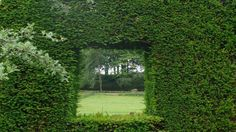 A green window made in a #hedge at #Cranborne garden, #England. pic.twitter.com/JKxDZkOLaR