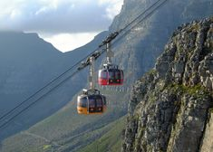 Private Table Mountain, Kirstenbosch and Constantia Wine Tasting. Table Mountain, Tour Operator, Once In A Lifetime, Nature Reserve, Health And Safety, Golden Gate Bridge, Wine Tasting, Day Trips, The Locals