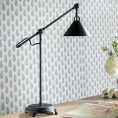 Need new lighting design? See the Newton Adjustable Task Lamp at Ballard Designs online and love the bright new rooms in your life! Kitchen Lighting Design, Kitchen Lighting Fixtures, Light Fixtures, Leaking Faucet, Study Room Design, Focus Light, Task Lighting, Lighting Ideas, Task Lamps