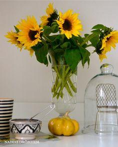 Sunflower, Tine K och a little shair.