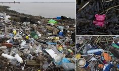 Shocking pictures show size of plastic pollution crisis as tons of bottles and other rubbish pile up on the shores of the Thames Estuary  Read more: http://www.dailymail.co.uk/news/article-5231667/Shocking-pictures-size-plastic-pollution-crisis.html#ixzz53LXbZsuV  Follow us: @MailOnline on Twitter | DailyMail on FacebookThe shores of the Thames Estuary are an important feeding ground for wading birds and other marine wildlife. Yet the plastic litter dumped along the shore will have…