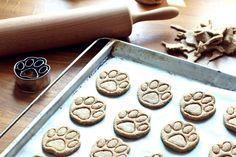 Hundekekse: Thunfisch Vollkorn Pfötchen, hundekekse, thunfisch, fischli, hund, max, goodie, plätzchen, selbstgemacht, backen, diy, thermomix, food, foodlove, foodblogger, foodie, hundeplätzchen, pfötchen kekse, kekse, cookies, yum, lecker rezept, puppcakes, puppy cakes,