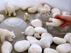 Pebble and polar bear ice play