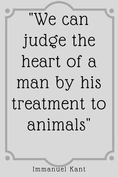 dog quote animals treatment