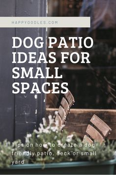 Looking to create a dog friendly space for you and your furry companion to enjoy some outdoor time together? We got you covered. Here you will find dog patio ideas, and tips on how to create a dog friendly patio, porch, deck or small yard to share with your dog. (#dogfriendly. #dogfriendlypatio, #dogfriendlysmallyard, #dogpatioideas) Small Patio Spaces, Dog Spaces, Dog Washing Station, Living With Dogs, Clever Dog, Dog Nutrition, Dog Area, Dog Rooms, Animal Projects