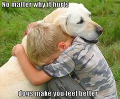No matter how it hurts, dogs make you feel better.