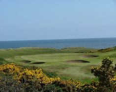 Royal Aberdeen - Golf Scotland