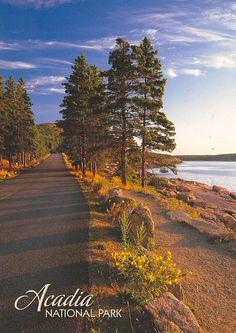 Maine - Arcadia National Park #ridecolorfully