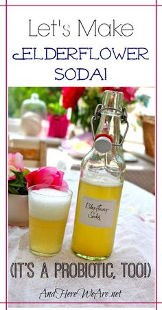 Let's Make Elderflower Soda (It's a probiotic, too!) | And Here We Are...