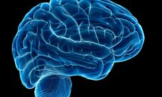 Brain training cuts risk of dementia by nearly HALF in older adults