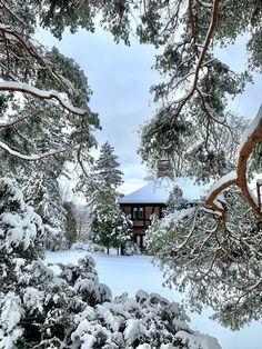 900 Ideas De Invierno Nieve Hermoso En 2021 Invierno Nieve Paisaje Nieve