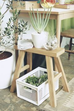 plants in small spaces Muji Home, Muji Style, My Doll House, Types Of Rooms, Vintage Room, Inspiring Things, Indoor Plants, Interior Architecture, Ideal Home
