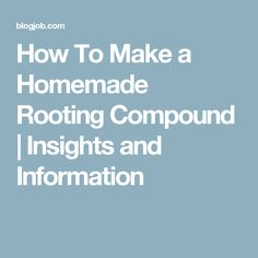 How To Make a Homemade Rooting Compound | Insights and Information