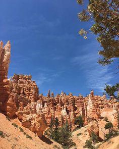 Gotta love Utah  . . . #brycecanyon #utah #brycecanyonnationalpark #travel #nationalpark #adventure #usa #explore #roadtrip #brycecanyonnps #brycecanyonsunrise #nature #nationalparks #brycecanyonutah #bryce #hoodoos #running #brycecanyonultras #hiking #landscape #brycecanyonsnow #exploremore #vsco #wildernessculture #vscocam #brycecanyonnp #wanderlust #findyourpark #brycecanyon100 #liveauthentic Bryce Canyon Utah, Grand Canyon, Backpacking Pictures, Travel Pictures, Wilderness, Sunrise, Road Trip, National Parks, Hiking