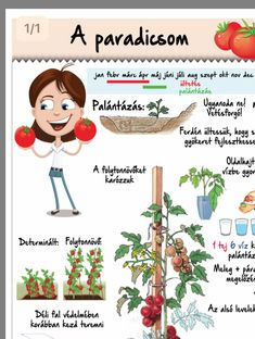Gardening Tips, Homesteading, Activities For Kids, Green, Plants, Vegetable Garden, Children Activities, Kid Activities, Plant