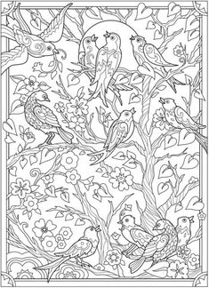 Creative Haven Birds and Blossoms Coloring Book @ Dover Publications Detailed Coloring Pages, Bird Coloring Pages, Adult Coloring Book Pages, Printable Adult Coloring Pages, Free Coloring, Coloring Books, Coloring Pages For Grown Ups, Zentangle Drawings, Dover Publications