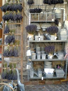 Ladder idea in lounge and tin stuff with lavender scattered throughout