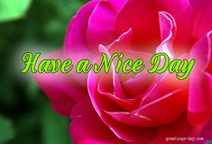 Have a Nice Day - Daily Wishes, GIFs, Pictures. #EverydayEcards, #GoodDayWishes, #GOODMORNING http://greetings-day.com/have-a-nice-day-daily-wishes-gifs-pictures.html
