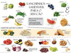 Traduzimos um gráfico muito interessante que mostra, de maneira bem visual e fácil, alguns alimentos que são permitidos e proibidos...