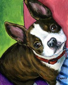 Boston Terrier by Dottie Dracos. Love the graphical style. I've never done a pet portrait. I think it's time.