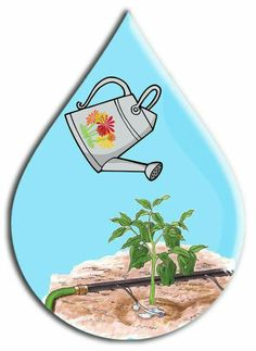 Forum design and photos retouching - . Forum – Powered by vBulletin Water Activities, Preschool Activities, Save Water Drawing, Family Tree Worksheet, Save Environment, Water Poster, World Water Day, Water Cycle, Photo Retouching