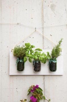 Selbst gemachter Gemüsegarten mit Krügen auf der Wand