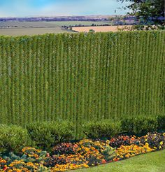 What a great idea for an ugly chain link fence.