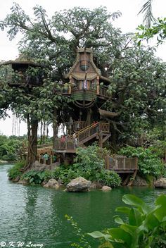 How To Build A Treehouse ? This Tree House Design Ideas For Adult and Kids, Simple and easy. can also be used as a place (to live in), Amazing Tiny treehouse kids, Architecture Modern Luxury treehouse interior cozy Backyard Small treehouse masters Beautiful Tree Houses, Beautiful Homes, Amazing Tree House, Awesome Tree Houses, Cool Tree Houses For Kids, Swiss Family Robinson Treehouse, Robinson Family, Wonderful Places, Beautiful Places