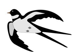 Love Birds, Garden Tools, Stencils, Projects To Try, Spring, Drawings, Pattern, Crafts, Animals