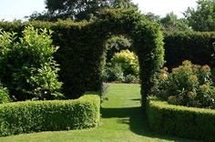 Fence or Hedge Your Garden – Which is Best?
