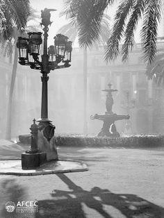 Fonts de la Plaça Reial de Barcelona, 1916-1937.