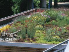 Pavilion Architecture, Garden Architecture, Sustainable Architecture, Residential Architecture, Contemporary Architecture, Underground Homes, Modern Fence, Plant Wall, Rooftop Garden