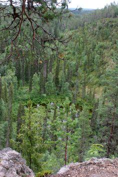pieni karhunkierros: Näkymä Kallioportilta.