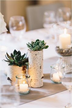 Decoration with birch and succulents, in the residence palace Bad Urach - grace and sense Event styling, decoration rental, floristry, stationery Decorating Your Home, Interior Decorating, Winter Girl, S Videos, Diy Cadeau, Paint Your House, Wedding Decorations, Table Decorations, Easter Nails