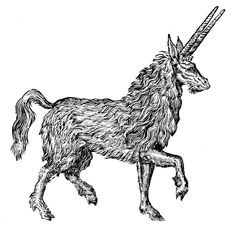 Pirassoipi- Arabic myth: a unicorn type animal with two horns instead of one. Its body is as big as a mule and it's as hairy as a bear.
