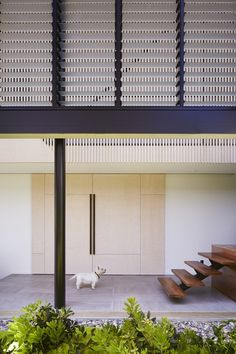 Image 15 of 26 from gallery of Bardon House / Bureau Proberts. Photograph by Alicia Taylor Photography Brisbane Architecture, Interior Architecture, Hip Roof, Queenslander, Skylight, Entry Doors, Hostel, Facade