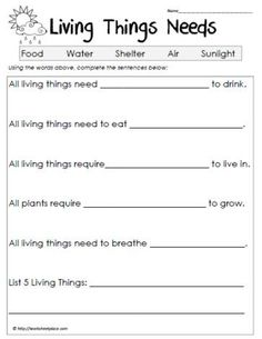 Free printable science worksheets for grade free first grade worksheets reading phonics rhyming further grade science worksheets free education free Primary Science, Kindergarten Science, Elementary Science, Science Classroom, Science Education, Teaching Science, Teaching Ideas, Free Education, Elementary Schools