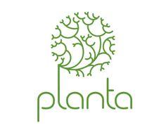 Organic cosmetic brand