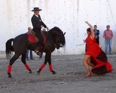 A dancer and horse perform before the crowd at the Albox fiesta, Almeria, Spain.