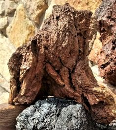 Aquarium Tree Trunk Lava Stone DIY Lava bonsai Rock Decoration WYSIWYG  #Unbranded