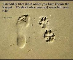 Keeping it real in life.. friendships are what count - even those of your family....