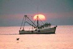 Louisiana Shrimp Boat/ I am so glad the fishing boats still look like this. Shrimp Boat, Fishing Vessel, Boat Art, Boat Painting, Diy Boat, New Orleans Louisiana, Down South, Boat Plans, Boat Building