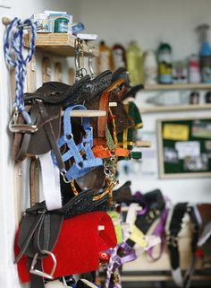 More tackroom. There's a felt cork board, bottles, bridles and more!