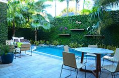 Zesty Zen - contemporary - pool - other metro - Lewis Aqüi Landscape + Architectural Design Outdoor Walls, Outdoor Rooms, Outdoor Living, Small Yard Design, Patio Design, Tropical Pool, Tropical Landscaping, Swimming Pool House, Swimming Pools