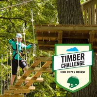 Timber Challenge High Ropes Adventure at Blue Mountain, ON