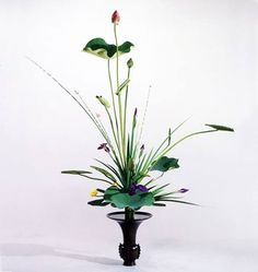 Lotus Rikka with rush - graceful Ikebana Arrangements, Modern Flower Arrangements, Centrepieces, Indoor Bamboo, Indoor Plants, Bonsai, Ikebana Sogetsu, Oriental Flowers, Japanese Flowers
