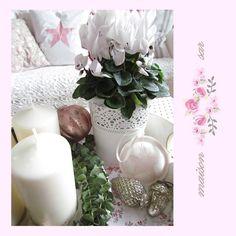 sar-bydlení, dekorace: Advent
