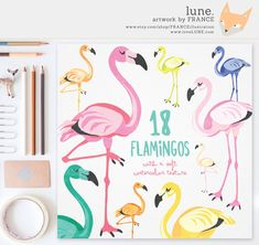Bird clipart painted watercolor birds by franceillustration lune get 3 for 2 flamingo clipart watercolor by franceillustration fandeluxe Images