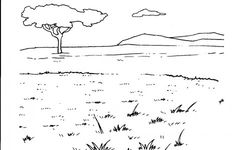 African animals habitat biome savanna colouring page for Temperate forest coloring pages